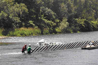 Second Phase of Chinook Bend Habitat Restoration Project Completed