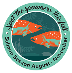 What's new in WRIA 8 salmon recovery